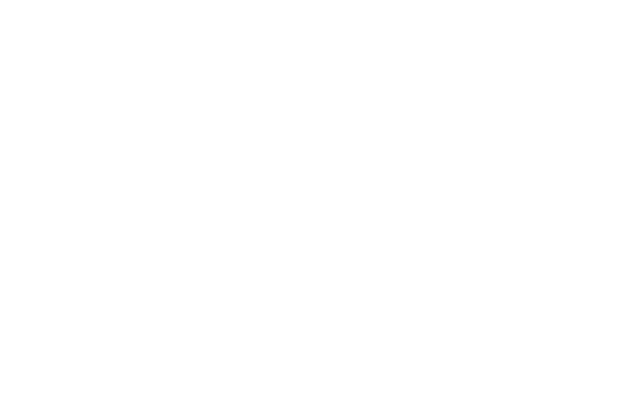 Ali Lalani